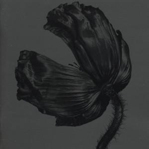 Pet Shop Boys - Release